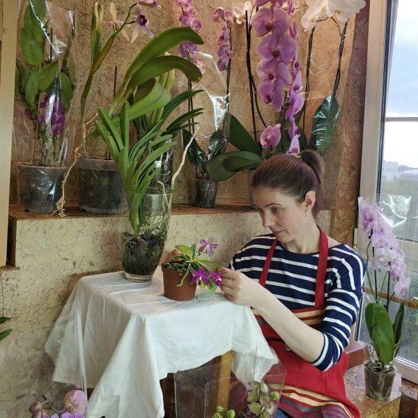 женщина ухаживает за орхидеями